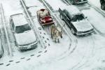 Автостоянка открытого типа: правовые аспекты